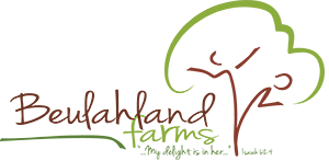 BL-Logo